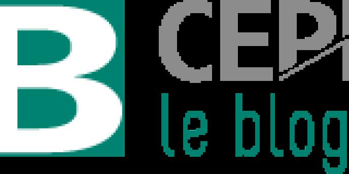 Logo du blog du Cepii.