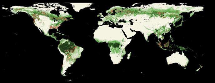 En rouge, les zones de déforestation entre 2005 et 2010.