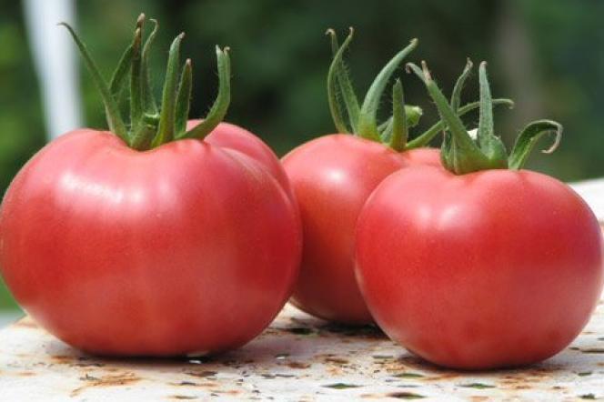 Des tomates rose de Berne.