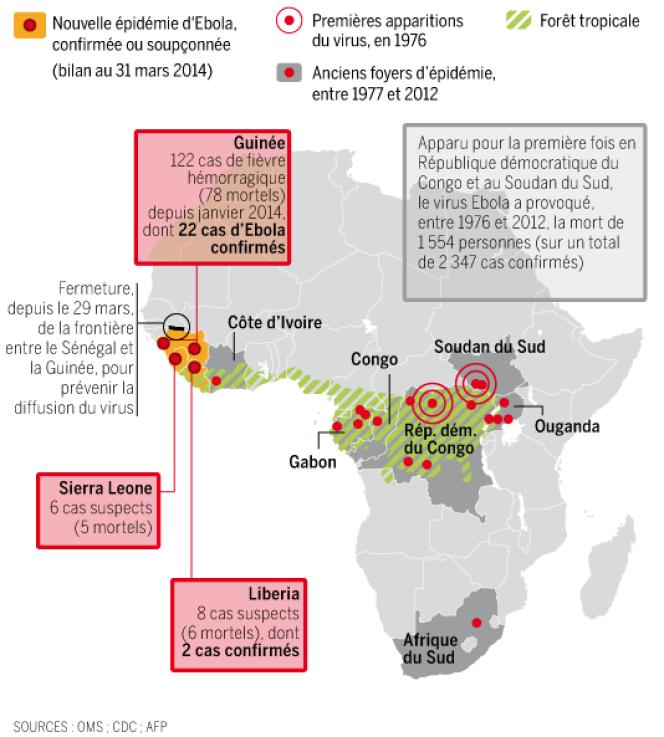 Le virus de la fièvre Ebola, apparu initialement en Afrique centrale, sévit aujourd'hui dans plusieurs pays d'Afrique de l'Ouest.