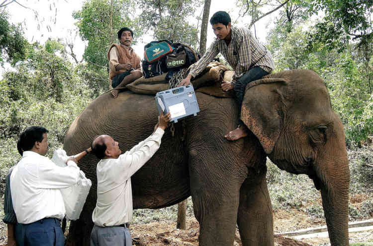 TO GO WITH India-election-logistics by Abhaya SRIVASTAVA(FILES) In this photograph taken on April 19, 2004, Indian election officials load electronic voting machines (EVM) on a elephant leaving for polling stations of the Guwahati constituency on the eve of national elections in Nortap, Assam state.  In India's elections which begin on April 7, 2014, some 814 million people are eligible to vote, 100 million more than last time round in 2009 which compares with an electorate of some 219 million in the United States.    AFP PHOTO/FILES