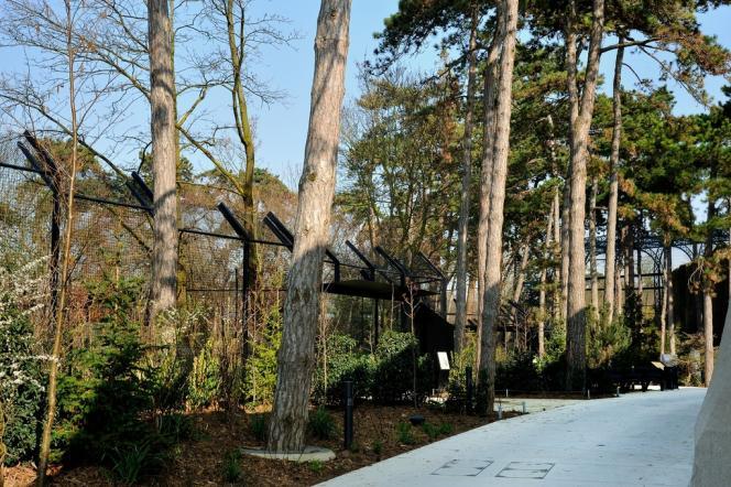 Le parc zoologique de Paris-Vincennes est parcouru par 4 kilomètres d'allées.