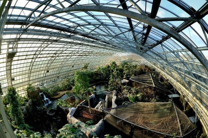 La grande serre, clou architectural du parc zoologique de Paris-Vincennes, a été conçue pour avoir la structure la plus légère possible.