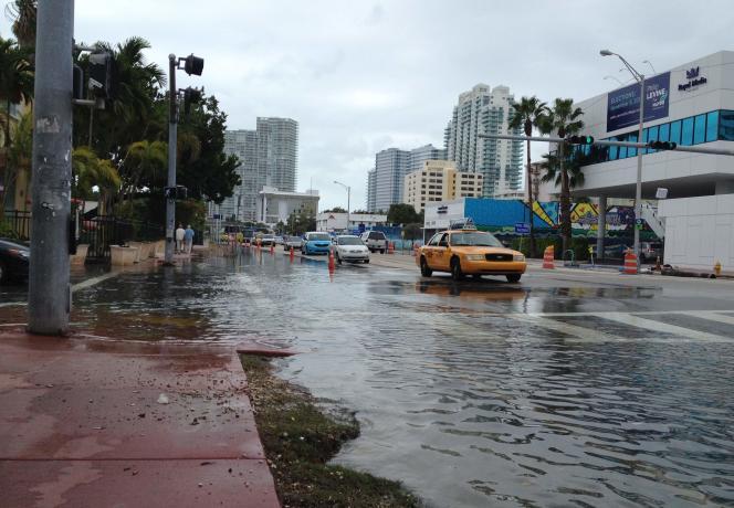 A Miami Beach, le 5 novembre 2013.