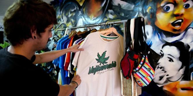 L'Uruguay est devenu en décembre le premier pays au monde à voter une loi régulant toute la chaîne de production de marijuana, sous l'autorité de l'Etat.