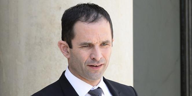 Benoît Hamon à l'Elysée, en mai.