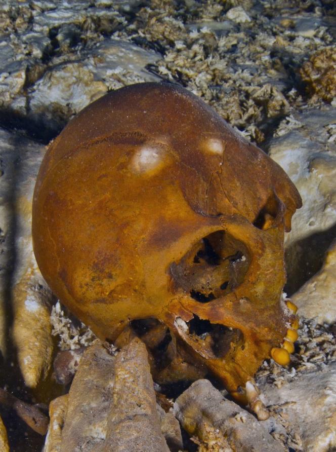 « Quel choc, quand j'ai vu son crâne intact, avec ses dents et les orbites noirs de ses yeux », a confié M. Nava.