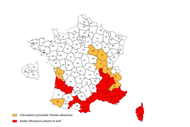 Implantation d'aedes albopictus en France fin 2013.