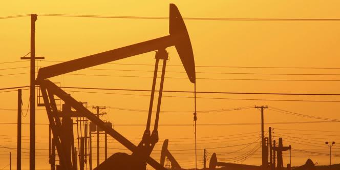 L'OPEP, réunie à Vienne vendredi 5 juin, devait confirmer sa politique : le maintien de son quota officiel de production de 30 millions de barils par jour, malgré une surproduction mondiale et la déprime des prix de l'or noir sur le marché.