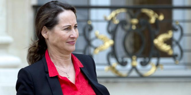 La ministre de l'écologie, Ségolène Royal, à l'Elysée, le 3 juin.