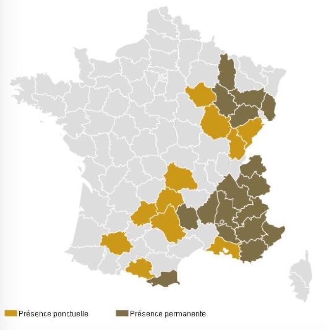 La carte de la présence des loups en France, en 2014.