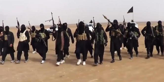 Un groupe djihadiste d'EIIL dans la province de Ninive, le 11 juin 2014.