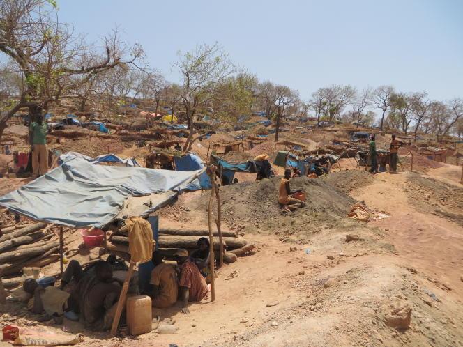 Pour s''abriter de la chaleur, des bâches sont tendues entre des piquets. Les dégâts environnementaux sont colossaux : chaque jour, des milliers de troncs et de pieds d'arbre sont coupés pour équiper les sites et construire des cabanes.