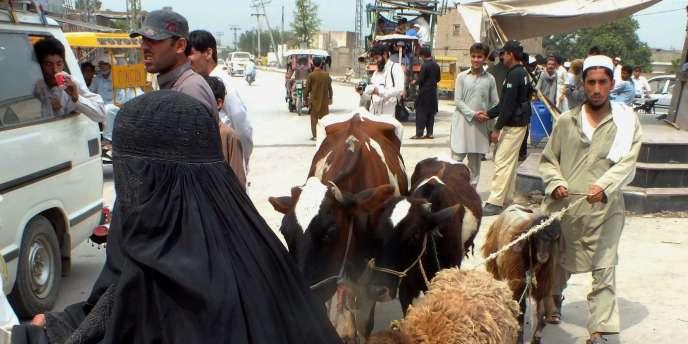 Des familles pakistanaises gagnent la ville de Bannu le 19 juin, fuyant l'offensive lancée contre les talibans et Al-Qaida.