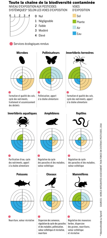 Toute la chaîne de la biodiversité contaminée.