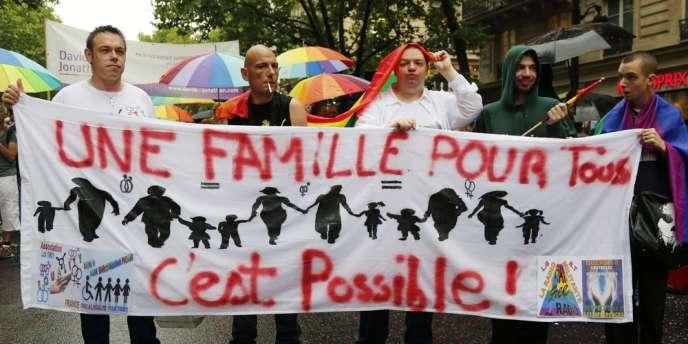 L'édition 2014 de la marche des fiertés lesbiennes, gays, bi et trans s'est tenue samedi avec des accents très revendicatifs, contre l'abandon des ABCD de l'égalité et l'interdiction de la PMA.