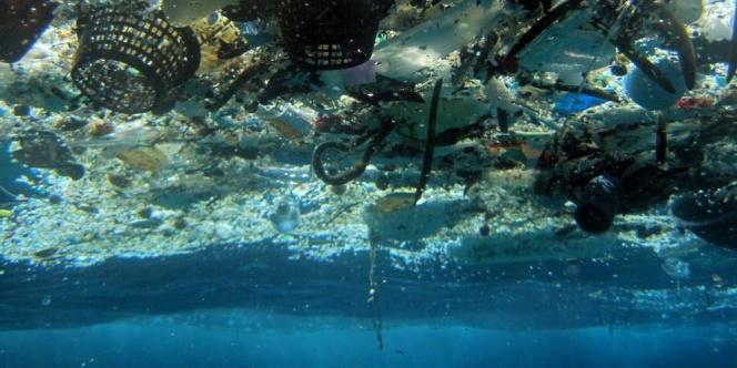 Des micro-fragments de plastique sont très largement répandus dans les océans, menaçant tout la chaîne alimentaire marine, selon une étude publiée lundi.