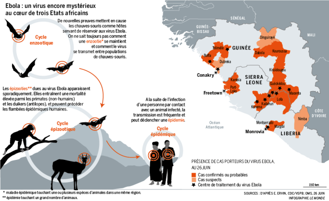 La diffusion du virus Ebola.