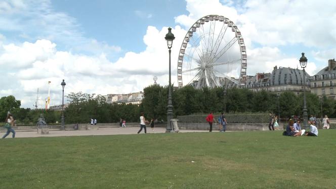 Des rats envahissent le jardin des Tuileries, Paris