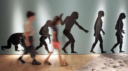Dans un musée de Bonn en Allemagne.