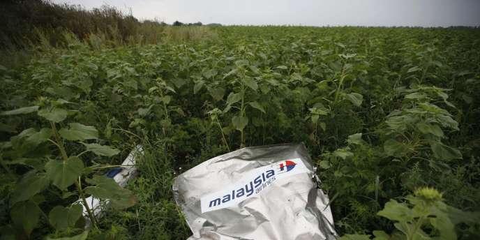Un débris de l'appareil de la Malaysia Airlines MH17 abattu en vol au-dessus de l'Ukraine le 17 juillet 2014.