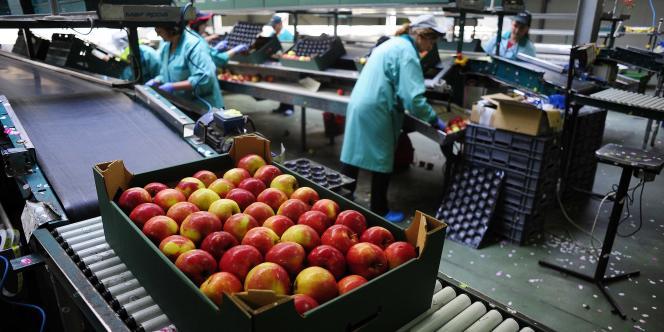 La Pologne a été le premier pays touché par l'embargo russe sur les produits alimentaires européens et américains.