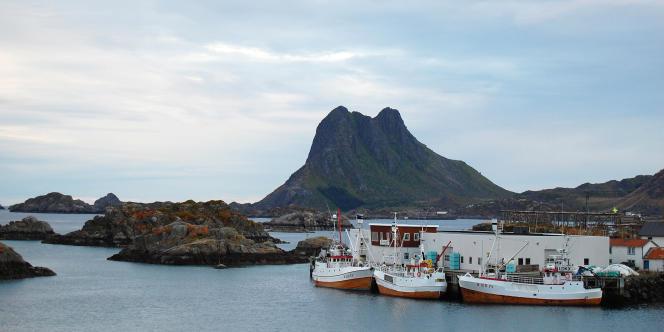 Des bateaux de chasse à la baleine à Stiene, dans le nord de la Norvège, en août 2008.