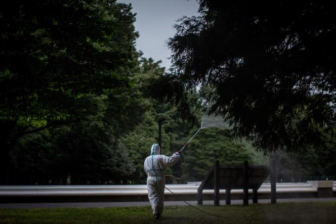 Fumigation dans le parc de Yoyogi, jeudi 28 août, à Tokyo. Trois personnes qui y ont été piquées par des moustiques, ont contracté la dengue.