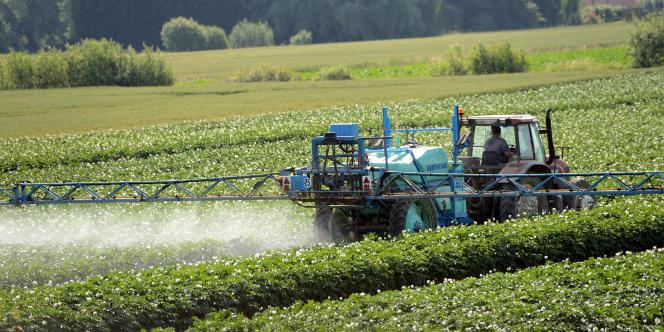 Le projet de loi d'avenir pour l'agriculture vise à renforcer la compétitivité des filières agricoles tout en prenant le virage de l'agroécologie.