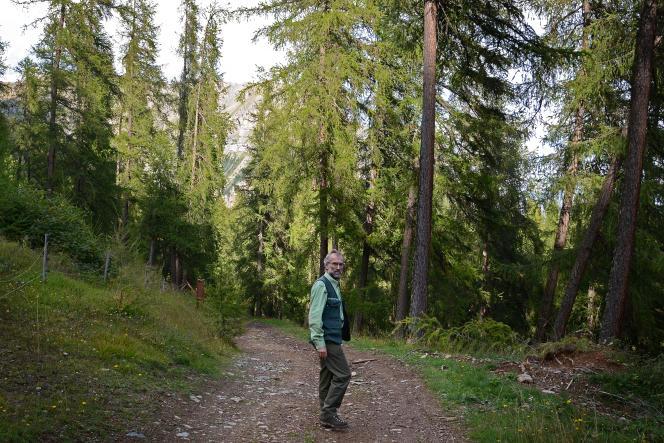 Dominique Delorme, agent patrimonial à l'ONF, gère une forêt de résineux dans les montagnes des Hautes-Alpes, près d'Embrun.