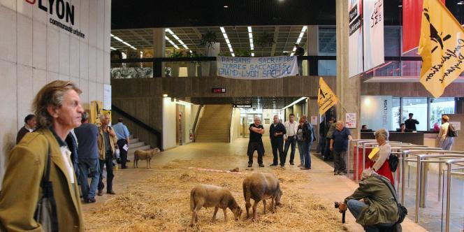 Les moutons étaient de sortie mercredi dans les locaux du Grand Lyon.