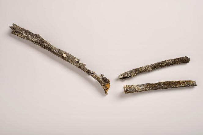 Ces trois os appartenant au bras gauche d'un pré-néandertalien vieux d'environ 200 000 ans ont été trouvés en Seine-Maritime.
