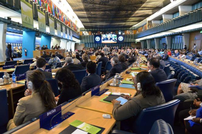 Au siège de l'Organisation pour l'alimentation et l'agriculture des Nations unies, à Rome (Italie), en 2014.