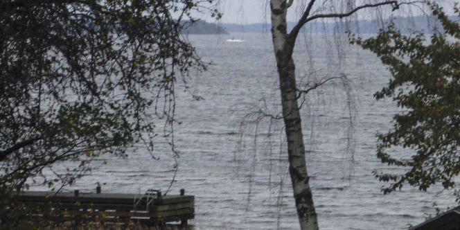 Cette photo diffusée par le ministre de la défense suédois montrerait un objet non identifié en mer, tâche sombre dans un halo clair, à gauche du bouleau.