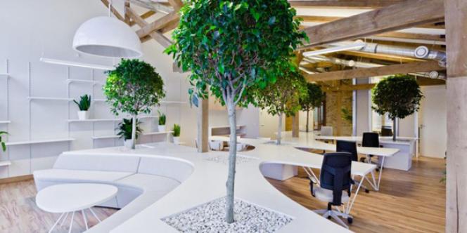 Greenhouse garden, open space conçu par le cabinet d'achitecture OpenAD.