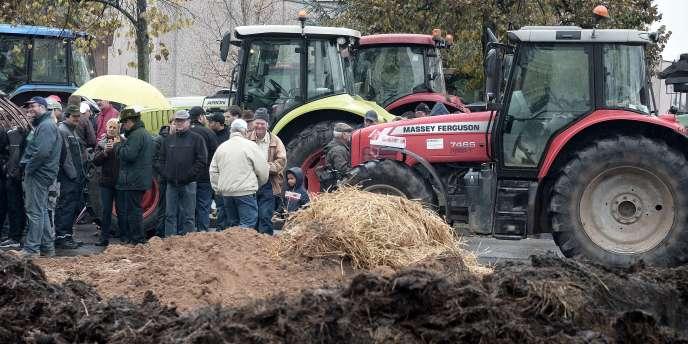 Une action de la Fédération nationale des syndicats d'exploitants agricoles, mercredi 5 novembre à Strasbourg.