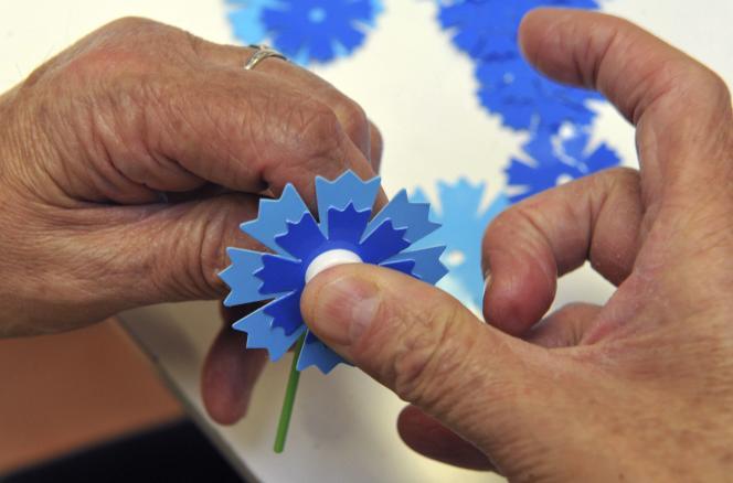 Un bleuet, assemblé en octobre.