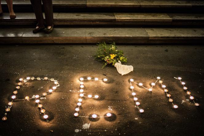 Rassemblement en hommage à Rémi Fraisse, le 29 octobre 2014 à Lyon.