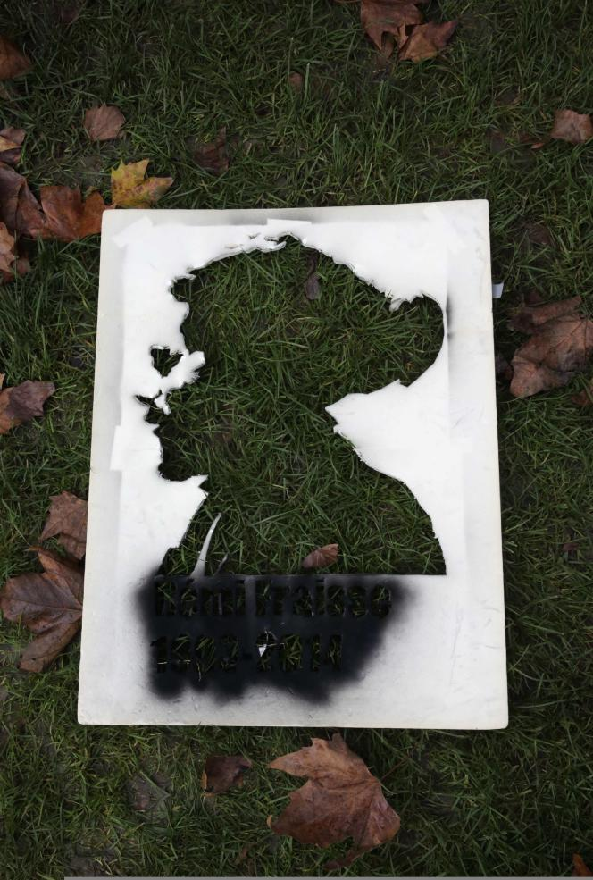 Un portrait de Rémi Fraisse lors d'une manifestation place de la Nation, le 13 novembre à Paris.