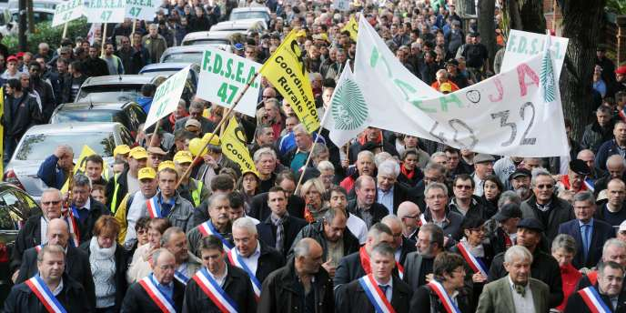 Les manifestants en faveur du projet de barrage à Sivens, le 15 novembre à Albi (Tarn).