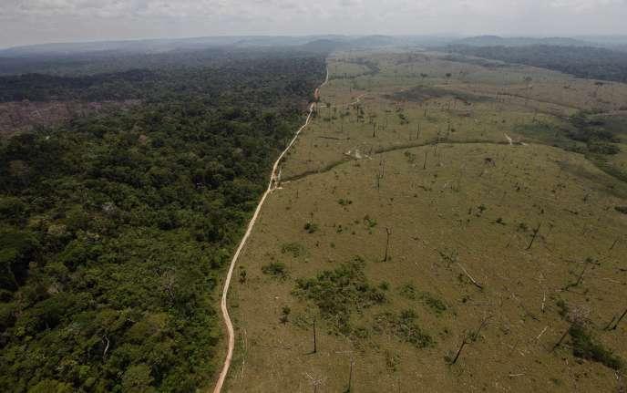 La déforestation dans l'Etat brésilien de Para, en 2009