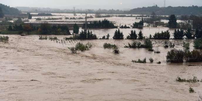 Des vignobles inondés par La Berre, à Portel-des-Corbières, dans l'Aude, le 30 novembre 2014.