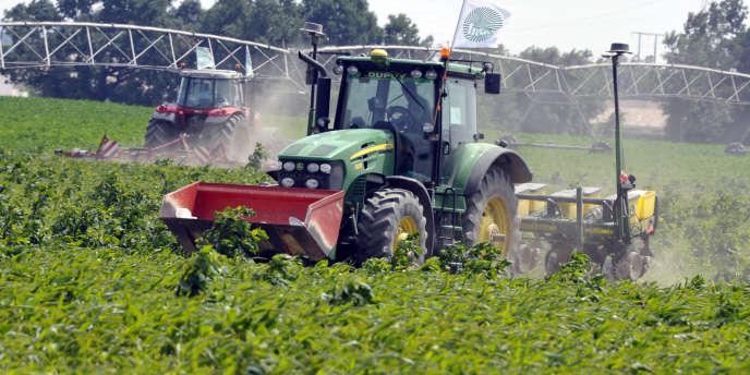 Un tracteur détruit des plantes de maïs transgénique, le 6 juin, à Saubens (Haute-Garonne).