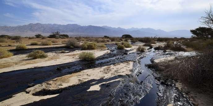 Des milliers de litres de pétrole se sont déversés dans le désert israélien, suite à la fuite d'un oléoduc, mercredi 3 décembre.