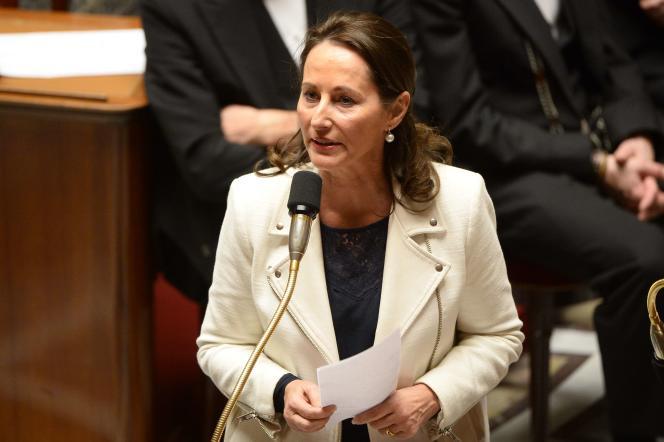 La ministre de l'écologie, Ségolène Royal, le 16 décembre 2014, à l'Assemblée nationale.
