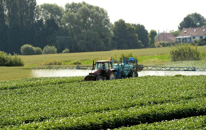 Epandage de pesticides dans un champs.