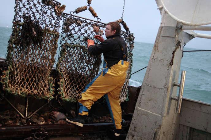 Un pêcheur français de coquilles Saint-Jacques, face à la côte de Port-en-Bessin-Huppain, en décembre 2014.