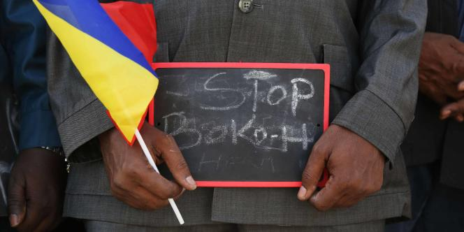 Boko Haram a multiplié les attaques dans le nord-est du Nigeria depuis le début de l'année 2015. Ici une manifestation à N'Djamena (Tchad), le 17 janvier.