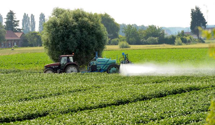 Traitement d'un champs aux pesticidesà Vimy (Pas-de-Calais).