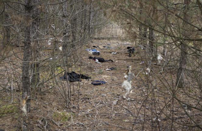 Près d'Asotthalom, dans le sud de la Hongrie. Ce bois est un point de passage des migrants kosovars se rendant en Allemagne.
